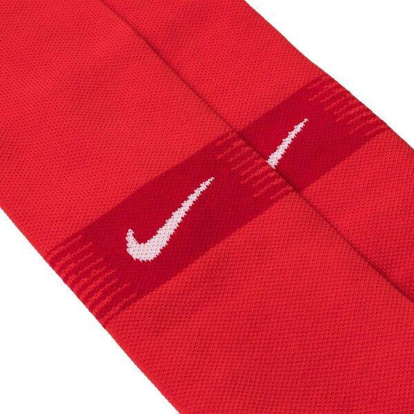 Гетры детские Сборная Франции домашние сезон 2018/19 Nike